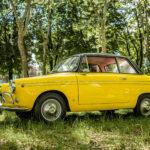 Da ALEX AUTO Torino una rarità in vendita, una FIAT 600 VIOTTI del 1963
